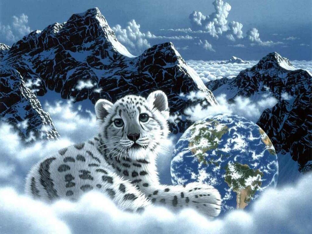 fond d'écran léopard des neiges