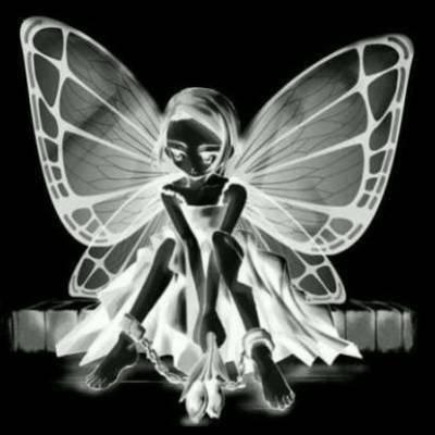Amazonfr : noeud papillon noir enfant